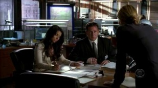 Without a Trace 05x09 : Watch Over Me- Seriesaddict